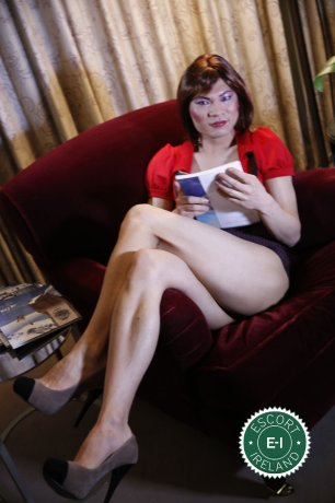 TV China Doll  is a hot and horny Chinese escort from Dublin 1, Dublin