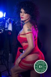 TV Nikita Mirs is a sexy Brazilian Escort in Dublin 7