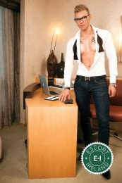 Meet the beautiful Alan in Dublin 4  with just one phone call