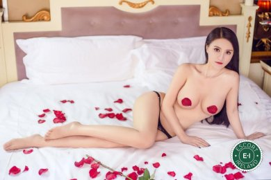 Meet the beautiful Bella in Dundalk  with just one phone call