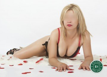 The massage providers in Galway City are superb, and Elena Hot Massage is near the top of that list. Be a devil and meet them today.