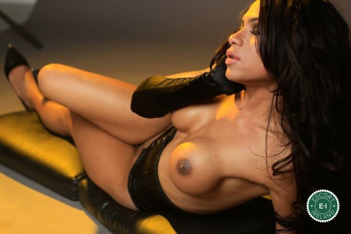 TS Sara  is a very popular South American Escort in Dublin 2