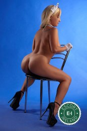 You will be in heaven when you meet Harley, one of the massage providers in Dublin 18