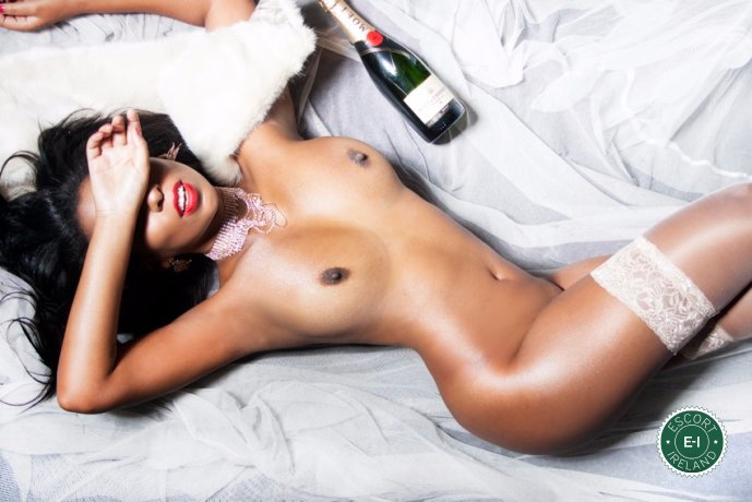 Isabela Carvalho is a sexy South American escort in Dublin 6, Dublin