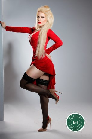 Jenny Foxx TS is a sexy British escort in Maynooth, Kildare