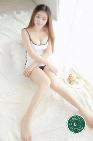 Linda is a super sexy Japanese Escort in Dungannon