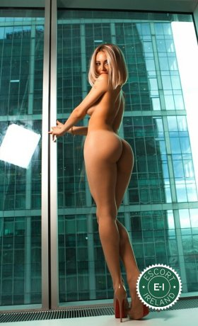 Spend some time with Kira in Navan; you won't regret it