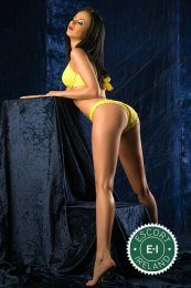 Meet the beautiful Lavinia in Dundalk  with just one phone call