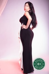 Kate Hot Lips is a very popular Brazilian Escort in Dungannon