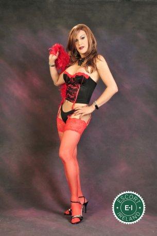 Vanessa TS is a sexy Colombian escort in Dublin 6 West, Dublin