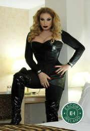 Meet the beautiful TS Brigitte Von Bombom in Cork City  with just one phone call