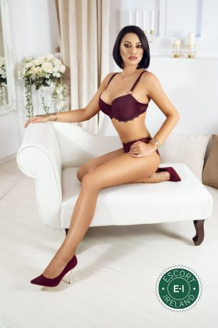 Party Queen Amber is a hot and horny Spanish Escort from Dublin 2