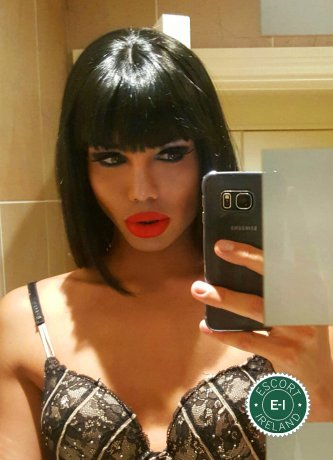 Meet the beautiful Shemale Kimber TV in Dublin 18  with just one phone call