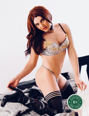 Meet the beautiful TV Sindy Cruz in Dublin 7  with just one phone call