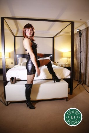 Book a meeting with TV China Doll  in Dublin 1 today