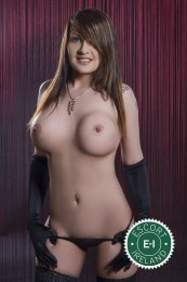Book a meeting with TS Maria in Dublin 7 today