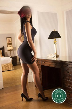 Meet the beautiful Katty in Dublin 2  with just one phone call