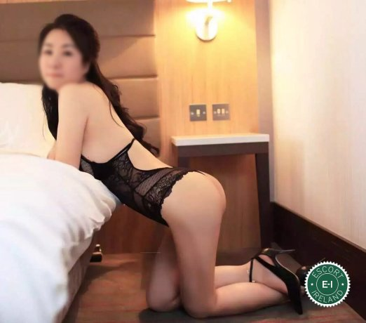 The massage providers in Dublin 1 are superb, and Aimee is near the top of that list. Be a devil and meet them today.