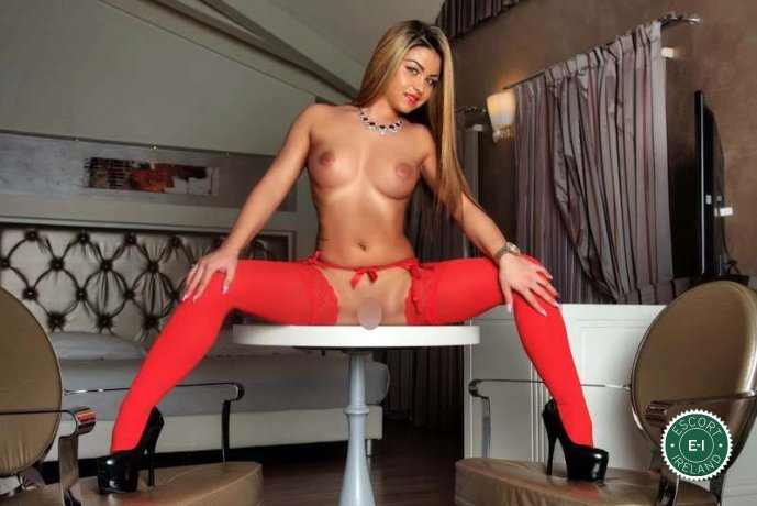 Spend some time with Lory in Cork City; you won't regret it