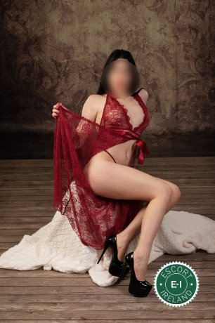 Sara is a hot and horny Hungarian Escort from Belfast City Centre