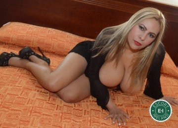 Meet the beautiful Marisol Sexy Star in Dublin 9  with just one phone call