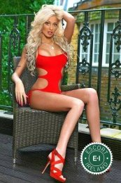 Book a meeting with Pety in Cork City today