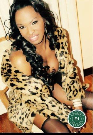 TS Rita Lopez  is a sexy Angolan escort in Dublin 15, Dublin