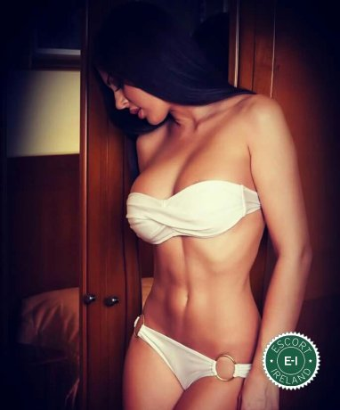Sasha is a sexy Czech escort in Dublin 15, Dublin