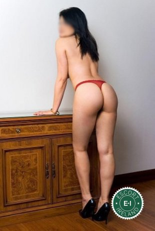 Eva is a high class Brazilian escort Waterford City, Waterford
