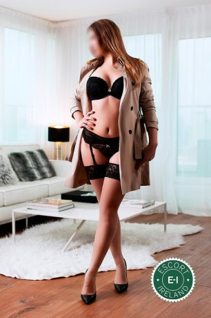 Book a meeting with Isabella Versace and Sophya in Dublin 4 today