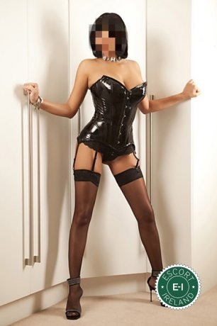 Emily is a hot and horny French escort from Dublin 18, Dublin