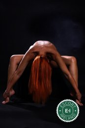 Book a meeting with Alina in Limerick City today