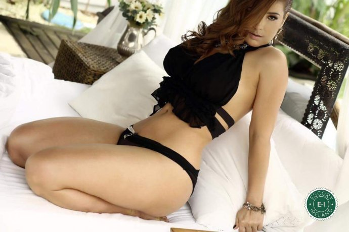 Giselly is a hot and horny Brazilian escort from Dublin 4, Dublin
