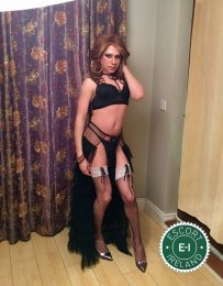 Meet the beautiful TV Luna in Limerick City  with just one phone call