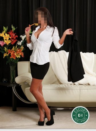 Book a meeting with British Kristie in Belfast City Centre today