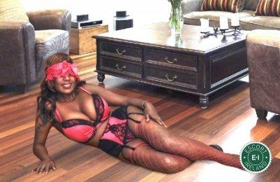 Sexy Luzia is a super sexy Puerto Rican Escort in Castlebar