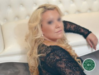 Book a meeting with Lavinia in Cork City today