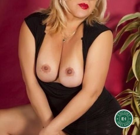The massage providers in Limerick City are superb, and Diosa Erotic Massage is near the top of that list. Be a devil and meet them today.